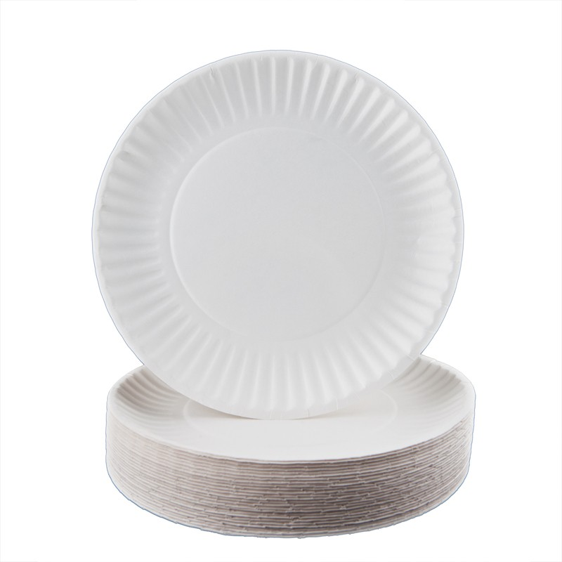 Plastic plates that look like real plates 5